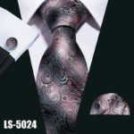 LS5024