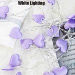 white-200002572